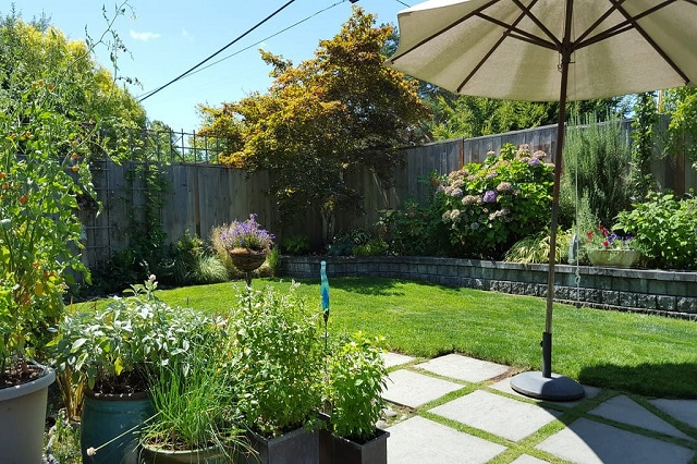Essentials You Must Learn for Landscape Design